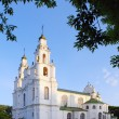 Orthodox Church in Polotsk, Belarus — Stock Photo #3229462