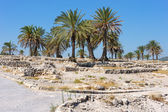 Biblical place of Israel: Megiddo — Stock Photo