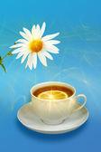 Natureza-morta com flores chá de limão e brancas — Fotografia Stock