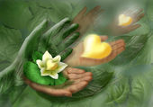 Still-life with hands, leaf and flower as heart — Stock Photo