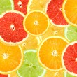 Abstract background of citrus slices — Stock Photo #3294765