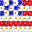 Background of flowers as USA flag — Stock Photo