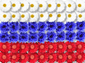 Background of flowers as Russia flag — Stock Photo