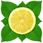 Single cross section of lemon with green leaf — Stock Photo