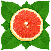 Single cross section of grape-fruit with green leaf — Stock Photo