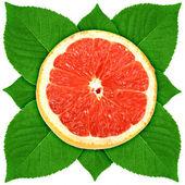 Single dwarsdoorsnede van druif-fruit met groen blad — Stockfoto