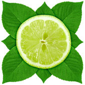 Single cross section of lime with green leaf — Stock Photo