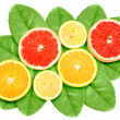 Set of cross citrus fruits on green leaf — Stock Photo