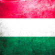 Stock Photo: Grunge flag of Hungary