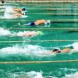 Competitions in swimming pool - Foto Stock