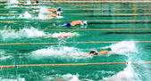 Competitions in swimming pool — Stock Photo