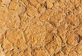 Surface de l'argile sèche — Photo