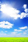Gröna fält och blå himmel — Stockfoto