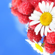 Chamomile and raspberries - Stok fotoğraf