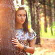 Attractive girl on a background of trees — Stock fotografie