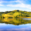 Mountain lake. Russia. Altai - Stock Photo