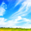 Green meadow and blue sky — Stock Photo