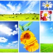 Collage on theme of the summer — Stock Photo