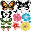 New set butterflies and flowers — Stok Vektör