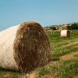 A field of straw — Stock Photo #3667752
