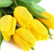 Yellow tulips — Stock Photo #2738799