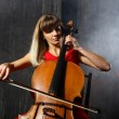 Beautiful cello musician - Stock Photo
