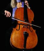 Cello on black — Stock Photo