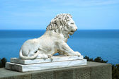 White marble lion — Stock Photo