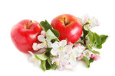 Rode appels — Stockfoto