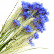 Cornflowers and cereals - Stock Photo