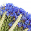 Cornflowers and cereals — Stock Photo #3507272