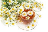 Herbal camomile tea — Stock Photo