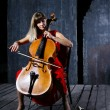 Постер, плакат: Beautiful cello musician