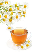 Herbal camomile tea — Stock Photo