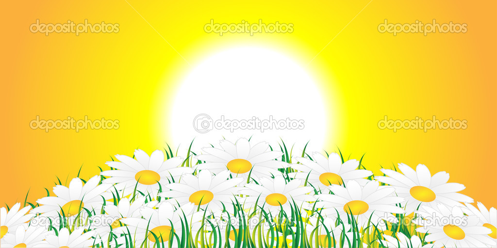 White flowers against a rising sun — Stock Vector #3096216