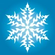 Snowflake — Stock Vector #2896872
