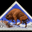 USSR CIRCA 1973: Wisent — Stock Photo
