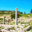 Amathus ruins — Stock Photo #3123686
