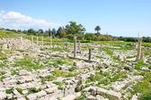Amathus ruins — Foto de Stock