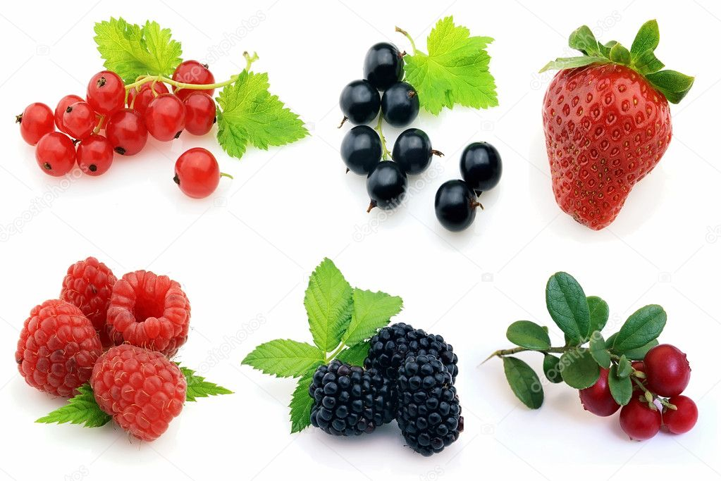 Fresh berries — Stock Photo #3788994