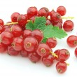 Currant — Stock Photo #3873074