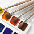 Watercolor paints and brushes — Stock Photo #3189263