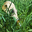 Stock Photo: Gas masks in grass