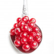 Berries red currants in spoon — Stock Photo #3547316