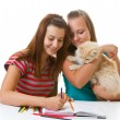Two teenage girls and a cat paint — Stock Photo