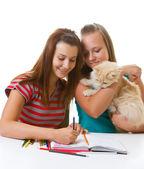 две девочки-подростки и кошка краска — Стоковое фото