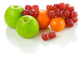 Состав фрукты — Стоковое фото