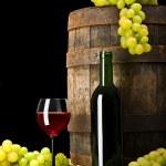 ワインの組成 — ストック写真