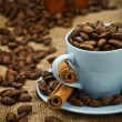 Composition of coffee beans and cup — Stock Photo