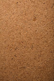 макрос из древесины — Стоковое фото